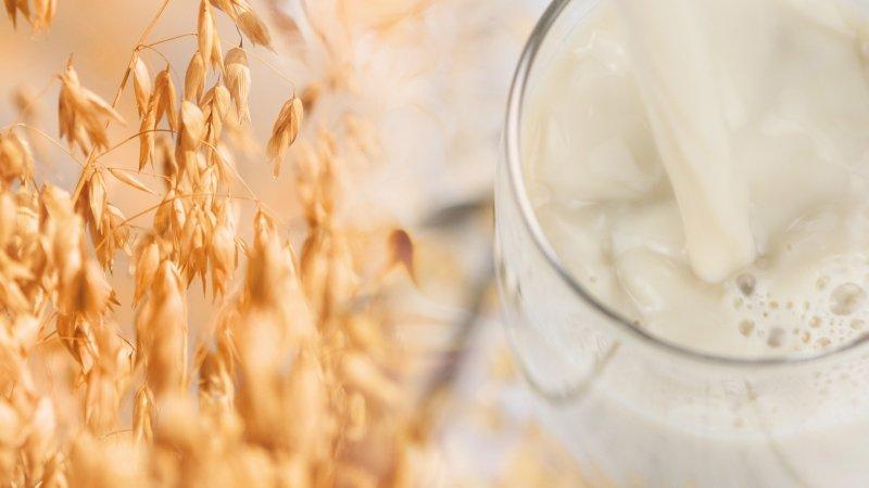 Die nachhaltig produzierten Ingredients sollen eine pflanzenbasierte Ernährung sowie eine nachhaltige Zukunft unterstützen (Bild: Döhler).